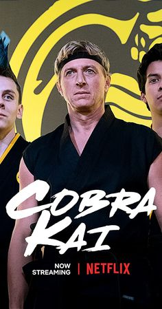 Karate Kid Movie, Karate Kid Cobra Kai, Best Tv Shows, Favorite Tv Shows, Jacob Bertrand, William Zabka, Nba Pictures, Ralph Macchio, Netflix Streaming