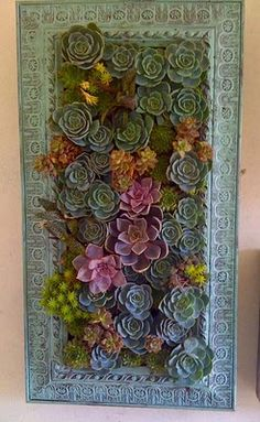 Picture frame or a nice trim on a shallow box. Fill box with a bit of soil and peat moss. Cover the moss with chicken wire and then plant with succulents. Let sit flat for a few weeks to let the roots establish themselves....