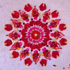 flower-designrulz (2)