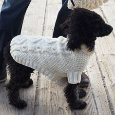 Yarnspirations is the spot to find countless free intermediate knit patterns, including the Patons Biscuits & Bones Dog Coat, XS . Browse our large free collection of patterns & get crafting today! Knitting Patterns For Dogs, Small Dog Clothes Patterns, Free Knitting, Knit Patterns, Large Dog Sweaters, Knit Sweaters, Very Small Dogs, Patons Classic Wool, Crochet Dog Sweater