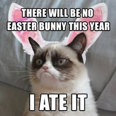 There will be no Easter bunny this year. I ate it.