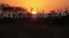 Rainer und Erika Hotzwik ließen uns dieses Foto aus ihrem Südafrika-Urlaub zukommen. Es zeigt Südafrika im Winter. Wir wünschen uns für den Winter hier auch ein bischen Südafrika...
