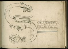 The first calligraphy book was written in 1592 by John Scottowe (Wing MS ZW 545 .S431). The book presents a calligraphic alphabet, each letter forming an elaborately decorated initial beginning a moral adage or other text, some in English and some in Latin, each in a different script.
