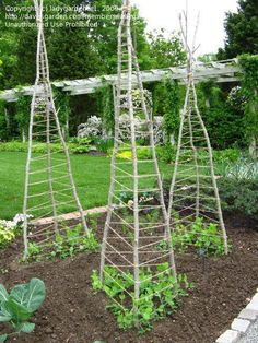 Here are some of the best raised bed garden designs around. Remember the purpose here is to not only have a garden to produce fruits and vegetables. Vege Garden Ideas, Backyard Vegetable Gardens, Veg Garden, Vegetable Garden Design, Edible Garden, Garden Planters, Garden Beds, Outdoor Gardens, Bamboo Trellis