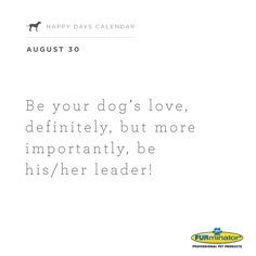 Be your #dog's #love, definitely, but more importantly, be his/her leader!