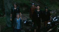 Maxi, Nerv, Raban, Juli and Joschka