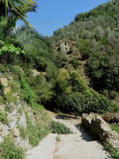 Rocchetta Nervina (IM): una discesa al rio Oggia