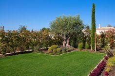Landscaping Villa Gardens Algarve | Gardener Services