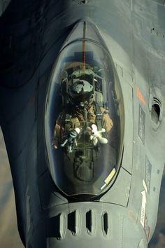Asian Fighter Pilot