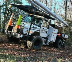 Tree Care, Monster Trucks, Vehicles, Car, Vehicle, Tools