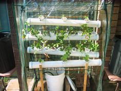 Picture of Hydroponic Food Factory