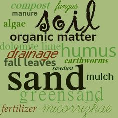 Soil is not just an inert substance - the life giving properties and the animals (the micro herd) that depend on them are only a part of what makes up soil.  Sandy, silty or clay muck, whatever your soil type, don't treat it like dirt.