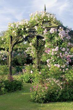 wooden garden pavilion with climbing roses. gazebo da giardino in legno con rose rampicanti in fiore. Garden Gazebo, Garden Landscaping, Gazebos, Arbors, Rose Arbor, Garden Cottage, Garden Junk, Wooden Garden, Climbing Roses