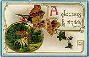 Grandma's Post Cards