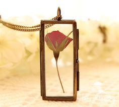 Colar Rosa Preservada