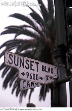 Sunset Boulevard, Los Angeles, California, USA