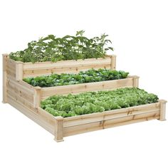 """#Recomeneded BCP Wooden Raised Vegetable Garden Bed 3 Tier Elevated Planter Kit Outdoor Gardening     """" 4' x 4' garden bed is perfect for growing your plants and vegetables With its https://trickmyyard.com/recomeneded-bcp-wooden-raised-vegetable-garden-bed-3-tier-elevated-planter-kit-outdoor-gardening-2/"""