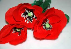 How to make tissue flowers - poppies Maki z bibuły DIY Tissue Flowers, Crepe Paper Flowers, How To Make Crepe, How To Make Paper, Red Poppies, Diy Tutorial, Handmade, Origami, Beautiful