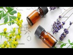 Overwhelmed with all this talk of essential oils? Our essential oils guide discusses what each oil can be used for to balance out your life. Essential Oil Box, What Are Essential Oils, Essential Oils Guide, Young Living Essential Oils, Acne Oil, Sweet Almond Oil, Osho, Natural Medicine, Seed Oil