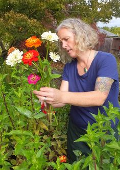 Essential s of growing cut flowers