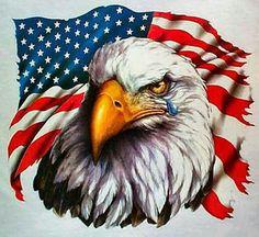 American Flag Wallpaper, Eagle Wallpaper, Patriotic Wallpaper, Patriotic Pictures, Eagle Pictures, Eagle Drawing, American Flag Eagle, American Pride, Eagle Painting