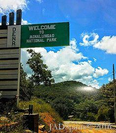 Minalungao National Park, An Ecotourism Marvel in Nueva Ecija Limestone Wall, National Parks, Environment, Marvel, Sign, River, Nature, Art, Art Background
