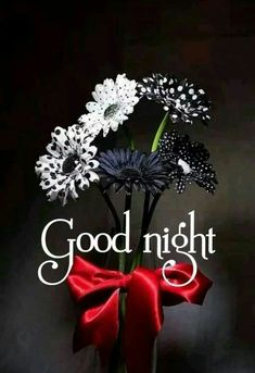 Good night beautiful Good Night Beautiful, Cute Good Night, Sweet Night, Good Night Sweet Dreams, Good Night Image, Good Morning Good Night, Night Time, Night Night, Morning Light