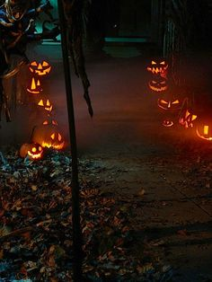 Lovely Samhain jack o'lanterns light the way.