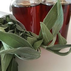 Recept: Šalvějový sirup Home Canning, Herbalism, Smoothie, Food And Drink, Herbs, Homemade, Drinks, Health, Plants