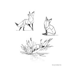working on some geometric foxes                              …