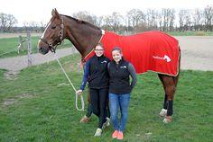 Voltigieren im Doppel - Pferdesportverein Augsburg e.V. Sport, Partner, Perfect Fit, Interview, Medical, Horses, Fitness, Animals, Vaulting