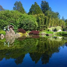 With arms open wide, let us all welcome the day. Inhaling fresh air and exhaling authentic refresh. 🌿 There's nothing better than seeing the grounds of Osmosis through the eyes of our incredible community. 🌿 Photo Credit: Melissa Barron Meditation Garden, Organic Facial, Sonoma County, Garden S, Spa Day, Photo Credit, North America, Arms, The Incredibles