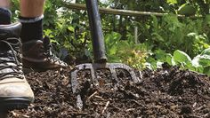 Jerry's clay soil fix | Organic Gardener Magazine Australia