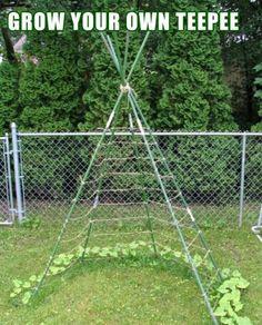 Teepee garden