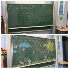 Arbeitsmotivation ☀️️#grundschule #zweiteklasse #grundschullehrerin #lernzeit #grundschulalltag #grundschulideen #lehrerin #lehrerleben #lehrerinmitherz