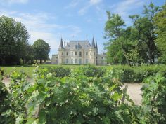 linna Bordeauxissa ja viinitila