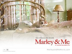 Marley and me (PG)