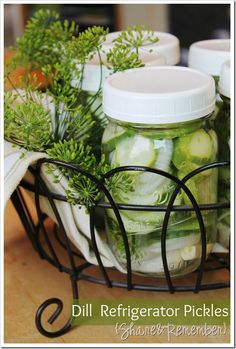 Dill refrigerator pickles