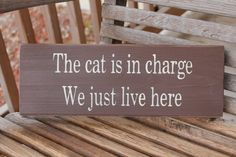 Wood Sign, The Cat Is in Charge, Funny Pet Sign, Kitchen Wall Art, Rustic, Wall Sign, Funny Quote, Home Quote, Hand Painted, Home Decor