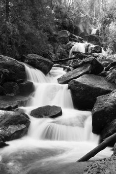 Rivers from across Victorian National parks and Tasmanian National parks Fine Art Photography, Landscape Photography, Black And White Landscape, Ranges, Wilderness, Waterfall, National Parks, Victorian, River