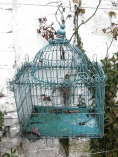 French blue vintage cage