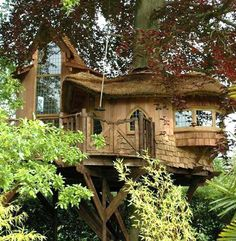 Epic treehouse - I could live here...
