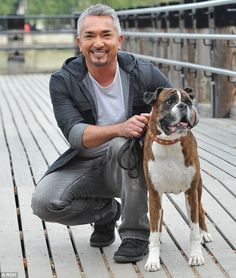 About go fetch on pinterest cesar millan dog whisperer and milan