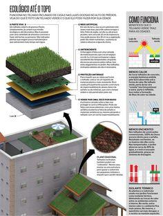 http://institutocidadejardim.files.wordpress.com/2013/07/ecolc3b3gico-atc3a9-o-topo.jpg  telhado verde
