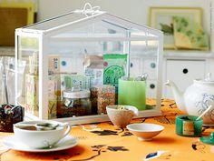 Mini greenhouse as a tea storage! From IKEA Miniature Greenhouse, Mini Greenhouse, Greenhouse Ideas, Tea Display, Tea Storage, Ikea Family, Tea Box, Sweet Home, New Homes