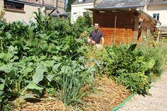 Joseph dans la partie potagère de son jardin, à Sotteville-lès-Rouen, le 10 juillet 2015. Au premier plan, les oignons perpétuels