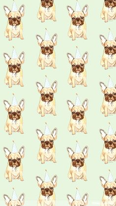 wallpaper iphone pug hat - Pesquisa Google