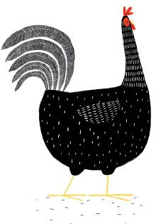 Black Rooster \ jim field