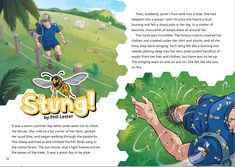 """Series: School Journal Level 2 May 2019 Learning area: English Curriculum level: 2 Reading year level: 4  When Janet set out to check the fences on her remote sheep farm in Taumaranui, she had no idea that her life would soon be in danger. Based on a real event, """"Stung!"""" recounts what happened when Janet stepped on a wasps' nest and was attacked by a swarm of angry insects. With no cellphone reception and no one there to help, Janet's survival depended on incredible stamina and determination... Literacy And Numeracy, Sheep Farm, Phil Lester, Drawing Skills, Wasp, Fences, Determination, Curriculum, Insects"""