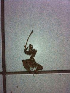 【侍】どう見てもサムライな落ち葉が激写される | ロケットニュース24